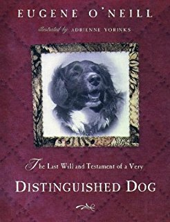 Distinguished Dog
